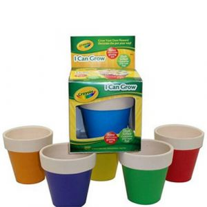 Crayola Draw & Grow Chalk Pot - Daisies