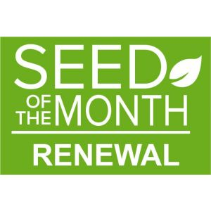 Everybody Gardens Doug Oster Seed of the Month Gardening Club